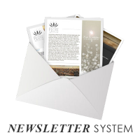 newslettersystem